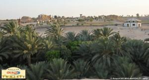 Tozeur's oasis